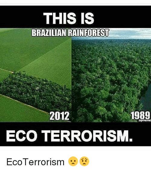 Memes, Brazilian, and Terrorism: THIS IS  BRAZILIAN RAINFOREST  2012  : 1989  ECO TERRORISM EcoTerrorism 😦😟