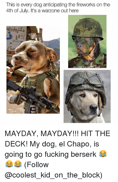 El Chapo, Fucking, and Memes: This is every dog anticipating the fireworks on the  4th of July. It's a  warzone out here  C E MAYDAY, MAYDAY!!! HIT THE DECK! My dog, el Chapo, is going to go fucking berserk 😂😂😂 (Follow @coolest_kid_on_the_block)