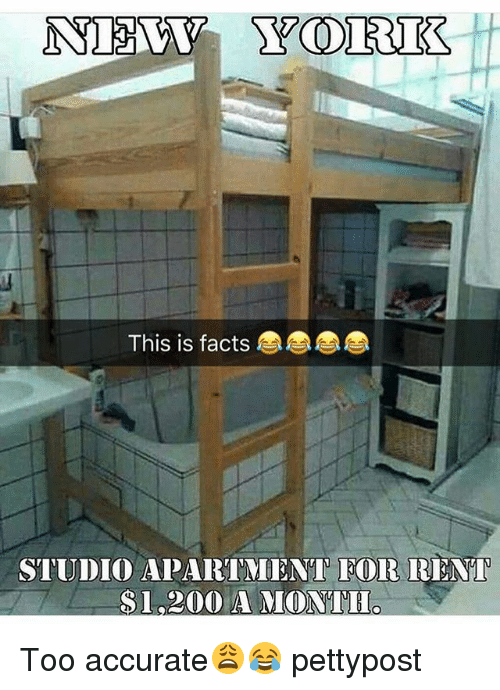 Bailey Jay, Facts, and Memes: This is facts  STUDIO APARTMENT EOR RENT  $1,200 AMONTIL, Too accurate😩😂 pettypost