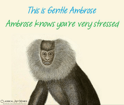Facebook, Memes, and facebook.com: This is Gentle Ambrose  Ambrose knows you're very stressed  LASSICAL ART MEMES  facebook.com/classicalartmemes