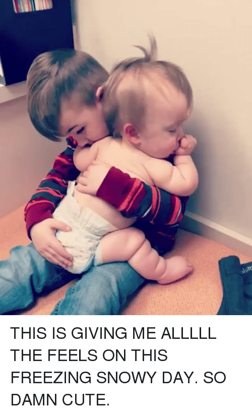 Cute, Funny, and Freezing: THIS IS GIVING ME ALLLLL THE FEELS ON THIS FREEZING SNOWY DAY. SO DAMN CUTE.