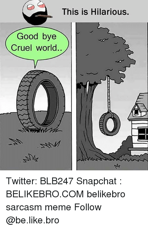 Be Like, Meme, and Memes: This is Hilarious.  Good bye  Cruel world Twitter: BLB247 Snapchat : BELIKEBRO.COM belikebro sarcasm meme Follow @be.like.bro