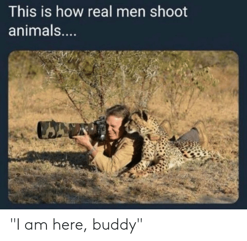 "Animals, Funny, and How: This is how real men shoot  animals ""I am here, buddy"""