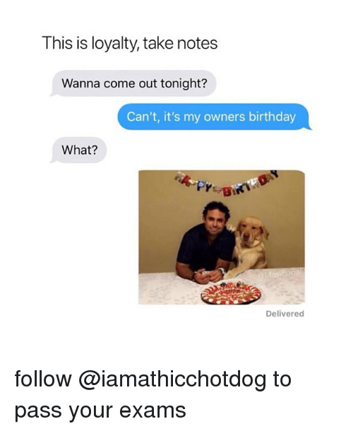 Birthday, What, and Notes: This is loyalty, take notes  Wanna come out tonight?  Can't, it's my owners birthday  What?  Delivered follow @iamathicchotdog to pass your exams