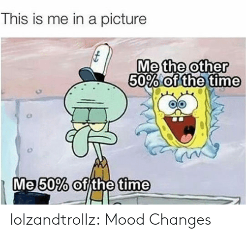 Mood, Tumblr, and Blog: This is me in a picture  Me other  50% olde tine  the  0  the  Me50% of the time lolzandtrollz:  Mood Changes