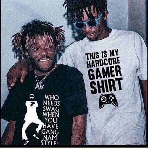 Swag, Gang, and Dank Memes: THIS IS MY  HARDCORE  GAMER  SHIRT  WHO  NEEDS  SWAG  WHEN  YOU  AVE  GANG  NAM  STYLFI