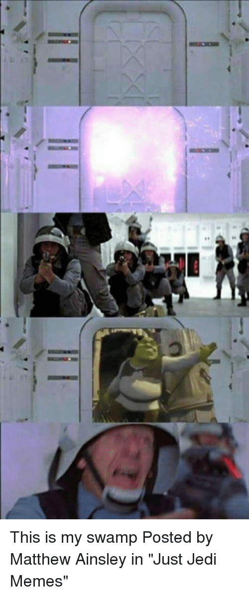 """Jedi, Memes, and Star Wars: This is my swamp   Posted by Matthew Ainsley in """"Just Jedi Memes"""""""