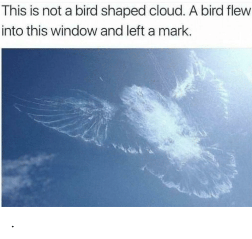 Cloud, Window, and This: This is not a bird shaped cloud. A bird flew  into this window and left a mark. .