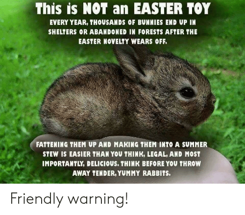 Bunnies, Easter, and Summer: This is NOT an EASTER TOY  EVERY YEAR, THOUSANDS OF BUNNIES END UP IN  SHELTERS OR ABANDONED IN FORESTS AFTER THE  EASTER NOVELTY WEARS OFF.  FATTENING THEM UP AND MAKING THEM INTO A SUMMER  STEW IS EASIER THAN YOU THINK, LEGAL, AND MOST  IMPORTANTLY, DELICIOUS, THINK BEFORE YOU THROW  AWAY TENDER, YUMMY RABBITS. Friendly warning!