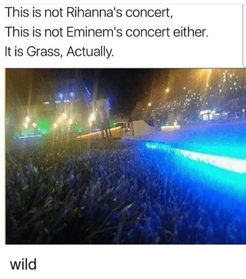 Memes, Wild, and 🤖: This is not Rihanna's concert,  This is not Eminem's concert either.  It is Grass, Actually. wild