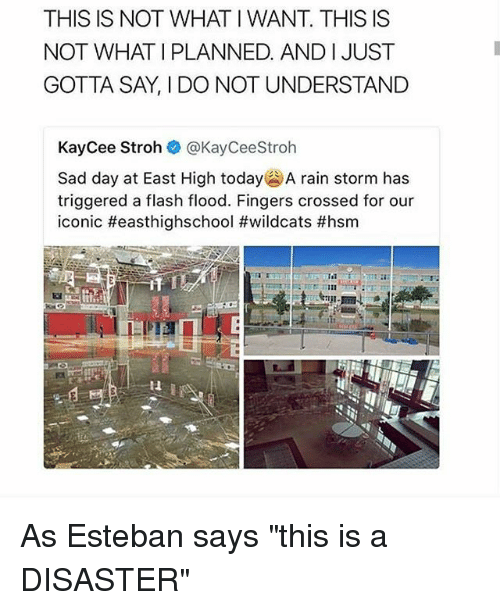 """Memes, Rain, and Today: THIS IS NOT WHAT I WANT. THIS IS  NOT WHAT I PLANNED. AND IJUST  GOTTA SAY, I DO NOT UNDERSTAND  KayCee Stroh @KayCeeStroh  Sad day at East High today' A rain storm has  triggered a flash flood. Fingers crossed for our  iconic #easthighschool #wildcats #hsm  it  Il As Esteban says """"this is a DISASTER"""""""