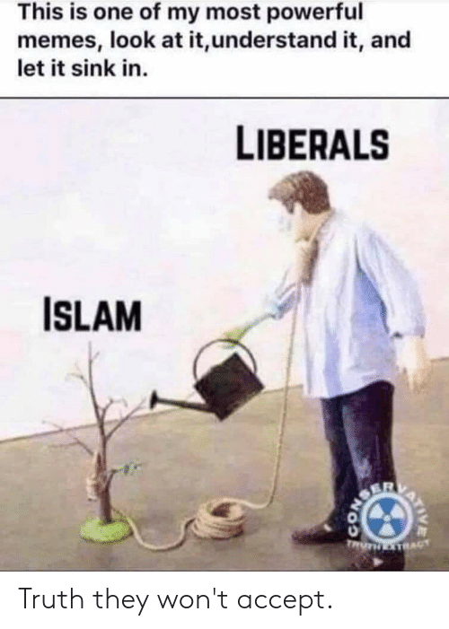 Memes, Islam, and Powerful: This is one of my most powerful  memes, look at it,understand it, and  let it sink in.  LIBERALS  ISLAM Truth they won't accept.