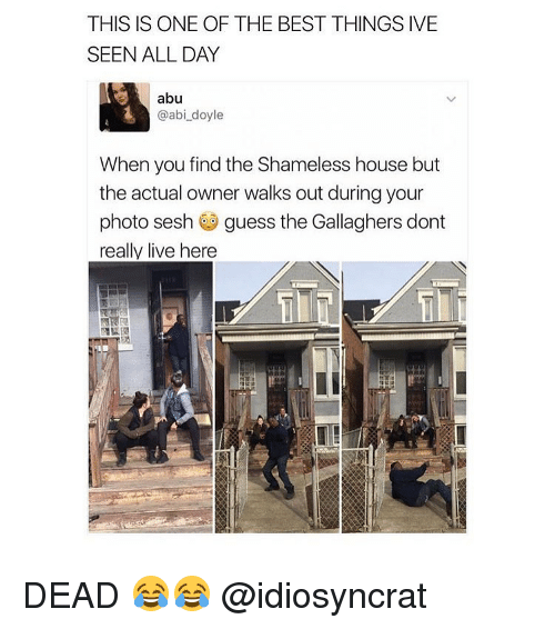 Memes, Shameless, and 🤖: THIS IS ONE OF THE BEST THINGS IVE  SEEN ALL DAY  abu  @abi doyle  When you find the Shameless house but  the actual owner walks out during your  photo sesh  guess the Gallaghers dont  really live here DEAD 😂😂 @idiosyncrat