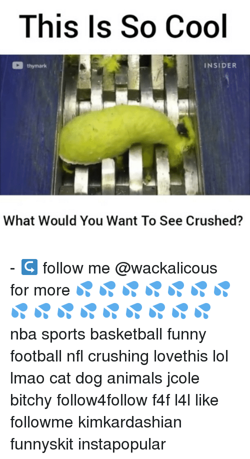 Crush, Memes, and Jcole: This Is So Cool  thy mark  INSIDER  What Would You Want To See Crushed? - ↪ follow me @wackalicous for more 💦 💦 💦 💦 💦 💦 💦 💦 💦 💦 💦 💦 💦 💦 💦 💦 nba sports basketball funny football nfl crushing lovethis lol lmao cat dog animals jcole bitchy follow4follow f4f l4l like followme kimkardashian funnyskit instapopular
