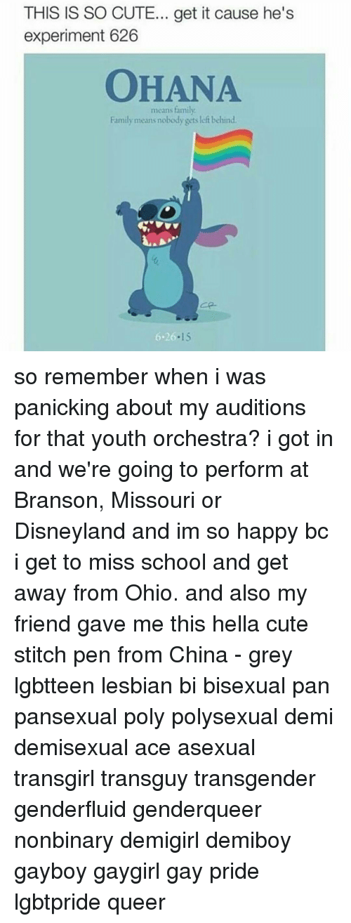 Disneyland, Memes, and Stitches: THIS IS SO CUTE... get it cause he's  experiment 626  means family  Family means nobody gets left behind  5.26.15 so remember when i was panicking about my auditions for that youth orchestra? i got in and we're going to perform at Branson, Missouri or Disneyland and im so happy bc i get to miss school and get away from Ohio. and also my friend gave me this hella cute stitch pen from China - grey lgbtteen lesbian bi bisexual pan pansexual poly polysexual demi demisexual ace asexual transgirl transguy transgender genderfluid genderqueer nonbinary demigirl demiboy gayboy gaygirl gay pride lgbtpride queer