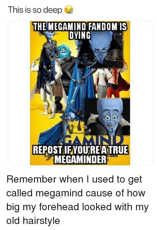Memes, True, and Old: This is so deep  THEMEGAMIND FANDOM IS  DYING  REPOST IFYOURE A TRUE  MEGAMINDER Remember when I used to get called megamind cause of how big my forehead looked with my old hairstyle
