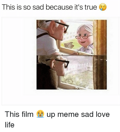 Life, Love, and Meme: This is so sad because it's true This film 😭 up meme sad love life