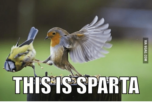 [Image: this-is-sparta-14055264.png]