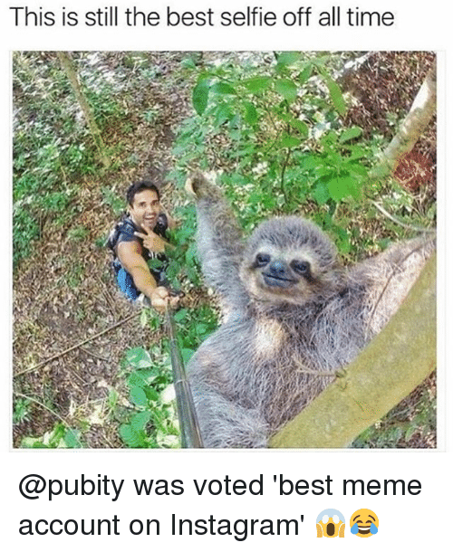 Funniest Meme Accounts : This is still the best selfie off all time was voted