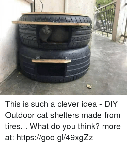 This Is Such A Clever Idea Diy Outdoor Cat Shelters Made