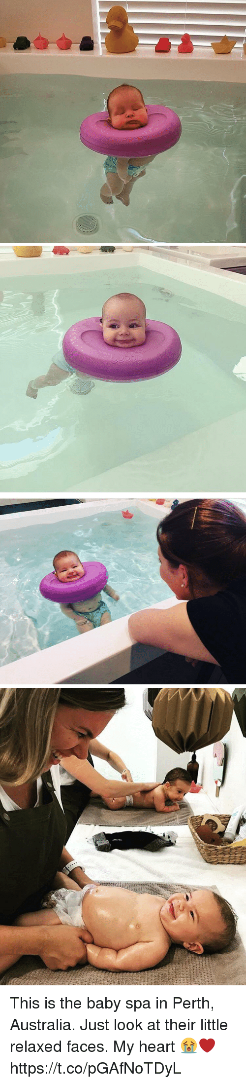 Australia, Heart, and Girl Memes: This is the baby spa in Perth, Australia. Just look at their little relaxed faces. My heart 😭❤️ https://t.co/pGAfNoTDyL