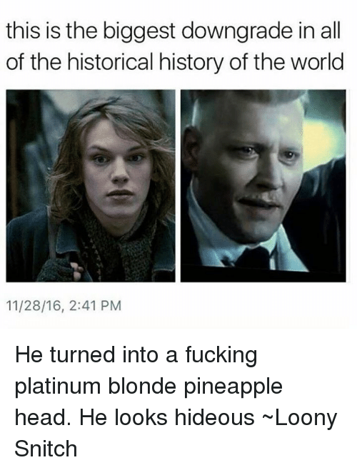 Memes, Snitch, and History: this is the biggest downgrade in all  of the historical history of the world  11/28/16, 2:41 PM He turned into a fucking platinum blonde pineapple head. He looks hideous ~Loony Snitch