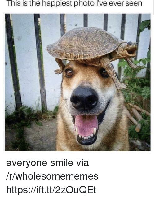 Smile, Via, and Photo: This is the happiest photo i've ever seen everyone smile via /r/wholesomememes https://ift.tt/2zOuQEt