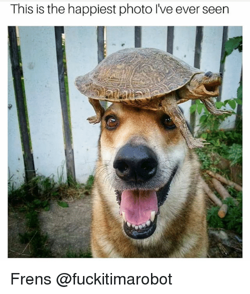 Funny, Meme, and Photo: This is the happiest photo Ive ever seen Frens @fuckitimarobot