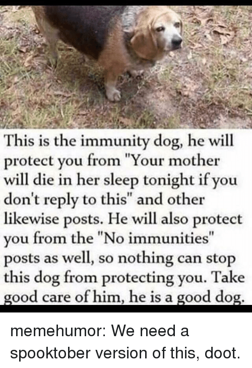 """Tumblr, Blog, and Good: This is the immunity dog, he will  protect you from """"Your mother  will die in her sleep tonight if you  don't reply to this"""" and other  likewise posts. He will also protect  you from the """"No immunities""""  posts as well, so nothing can stop  this dog from protecting you. Take  good care of him, he is a good dog. memehumor:  We need a spooktober version of this, doot."""