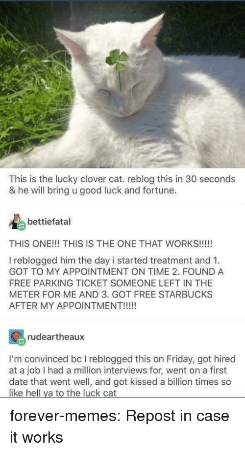 Friday, Memes, and Starbucks: This is the lucky clover cat. reblog this in 30 seconds  & he will bring u good luck and fortune.  bettiefatal  THIS ONE!!! THIS IS THE ONE THAT WORKS!!!!!  I reblogged him the day i started treatment and 1  GOT TO MY APPOINTMENT ON TIME 2. FOUND A  FREE PARKING TICKET SOMEONE LEFT IN THE  METER FOR ME AND 3. GOT FREE STARBUCKS  AFTER MY APPOINTMENT!!!  rudeartheaux  I'm convinced bc I reblogged this on Friday, got hired  at a job I had a million interviews for, went on a first  date that went well, and got kissed a billion times so  like hell ya to the luck cat forever-memes:  Repost in case it works