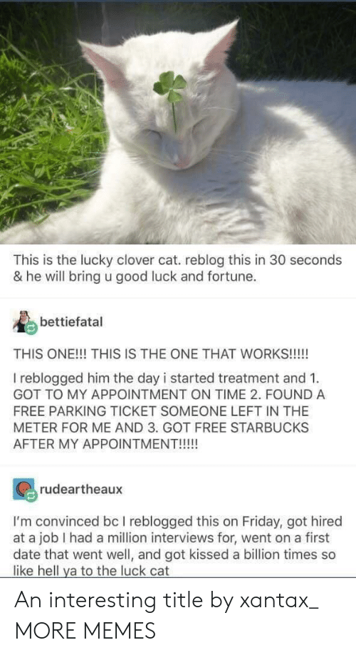 Dank, Friday, and Memes: This is the lucky clover cat. reblog this in 30 seconds  & he will bring u good luck and fortune.  bettiefatal  THIS ONE!!! THIS IS THE ONE THAT WORKS!!!!  I reblogged him the day i started treatment and 1  GOT TO MY APPOINTMENT ON TIME 2. FOUND A  FREE PARKING TICKET SOMEONE LEFT IN THE  METER FOR ME AND 3. GOT FREE STARBUCKS  AFTER MY APPOINTMENT!!!!  rudeartheaux  I'm convinced bc I reblogged this on Friday, got hired  at a job I had a million interviews for, went on a first  date that went well, and got kissed a billion times so  like hell ya to the luck cat An interesting title by xantax_ MORE MEMES