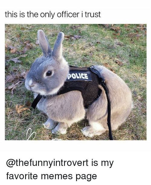 Funny, Memes, and Page: this is the only officer i trust  ONCE @thefunnyintrovert is my favorite memes page