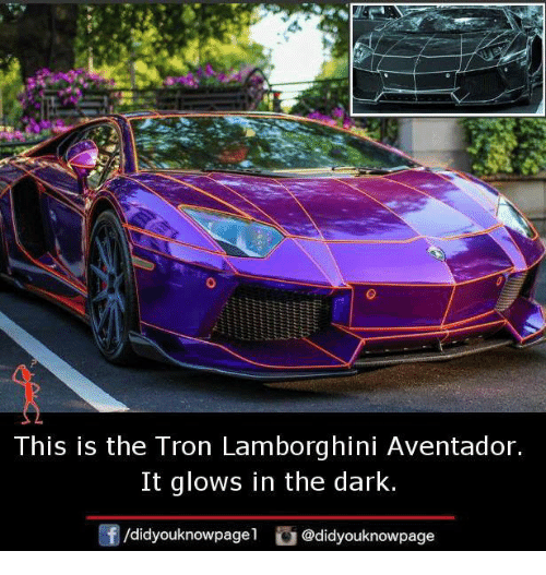 Memes, Lamborghini, And Tron: This Is The Tron Lamborghini Aventador. It  Glows In The Dark. /didyouknowpagel Cu @didyouknowpage
