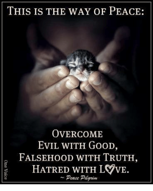 Memes, Good, and Evil: THIS IS THE WAY OF PEACE:  OVERCOME  EvIL WITH GooD,  FALSEHOOD WITH TRUTH,  HATRED WITH LVVE.  Peace Pilgrim