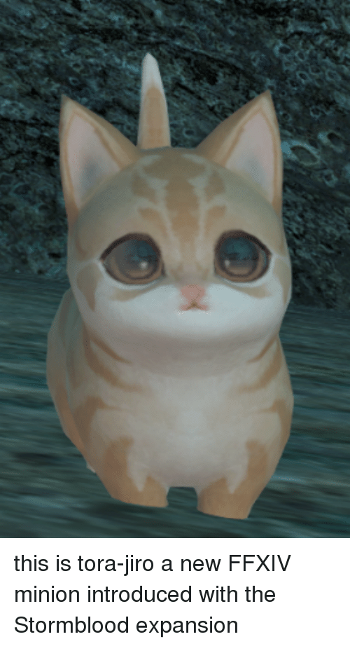 This Is Tora Jiro A New Ffxiv Minion Introduced With The Stormblood