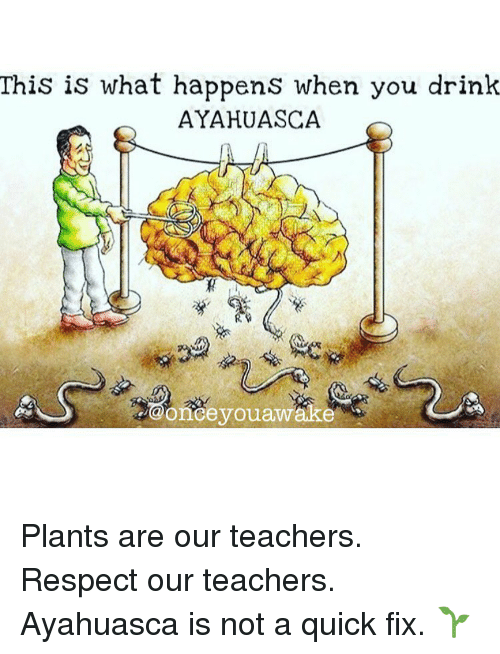 Memes, Respect, and 🤖: This is what happens when you drink  AYAHUASCA Plants are our teachers. Respect our teachers. Ayahuasca is not a quick fix. 🌱