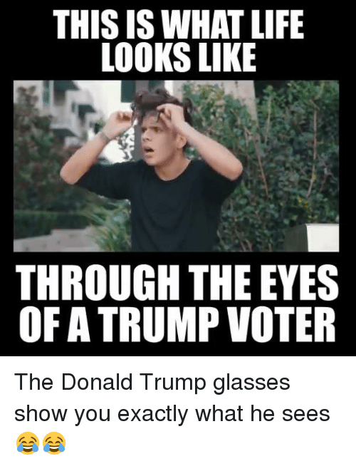 Dank, Donald Trump, and Life: THIS IS WHAT LIFE  LOOKS LIKE  THROUGH THE EYES  OF TRUMP VOTER The Donald Trump glasses show you exactly what he sees 😂😂
