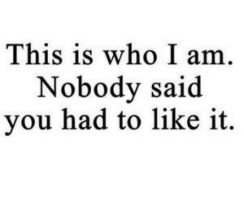 Who, You, and This: This is who I am.  Nobody said  you had to like it.