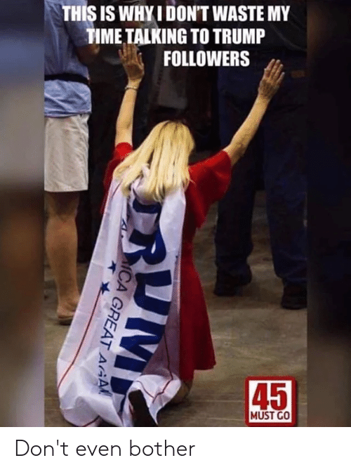 Memes, Time, and Trump: THIS IS WHYI DON'T WASTE MY  TIME TALKING TO TRUMP  FOLLOWERS  45  MUST GO Don't even bother