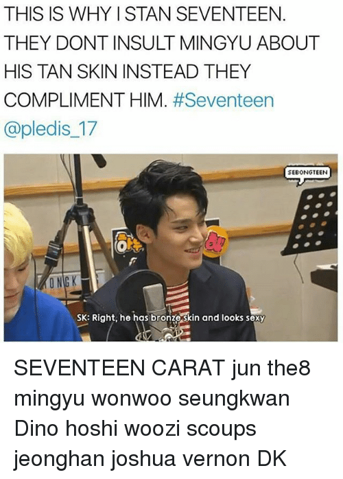 THIS IS WHYISTAN SEVENTEEN THEY DONTINSULT MINGYU ABOUT HIS