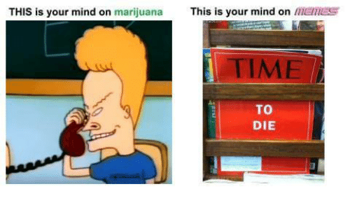 Marijuana, Time, and Dank Memes: THIS is your mind on marijuana  This is your mind on  lihtamES  TIME  TO  DIE