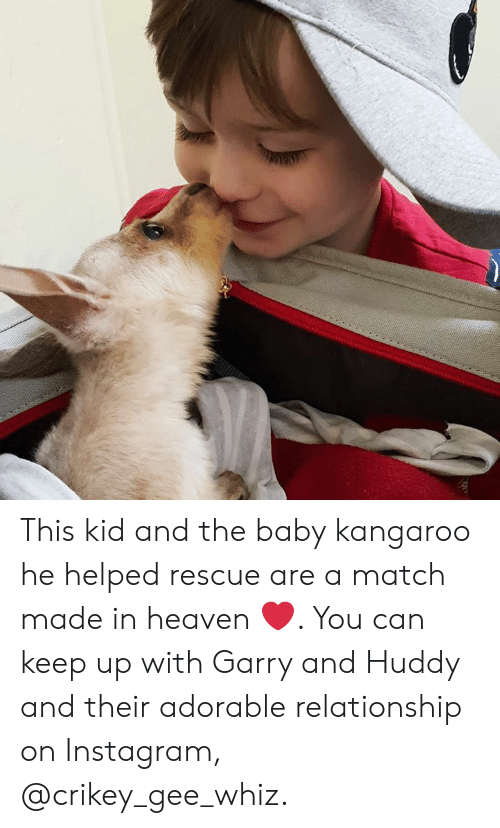 Heaven, Instagram, and Memes: This kid and the baby kangaroo he helped rescue are a match made in heaven ❤️. You can keep up with Garry and Huddy and their adorable relationship on Instagram, @crikey_gee_whiz.