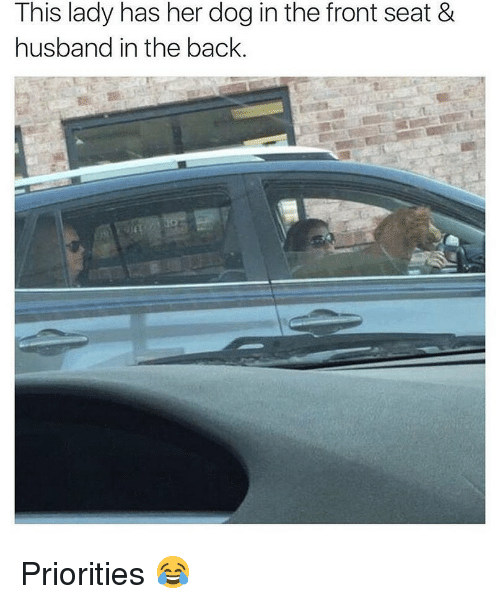 Memes, Husband, and Back: This lady has her dog in the front seat &  husband in the back.  沄军 Priorities 😂