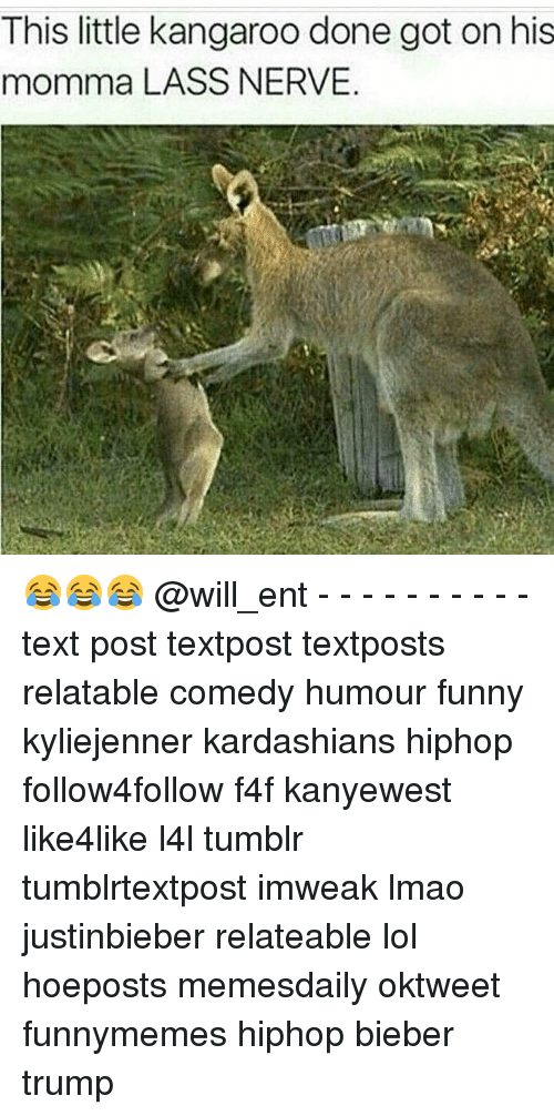 Memes, 🤖, and Bieber: This little kangaroo done got on his  momma LASS NERVE 😂😂😂 @will_ent - - - - - - - - - - text post textpost textposts relatable comedy humour funny kyliejenner kardashians hiphop follow4follow f4f kanyewest like4like l4l tumblr tumblrtextpost imweak lmao justinbieber relateable lol hoeposts memesdaily oktweet funnymemes hiphop bieber trump