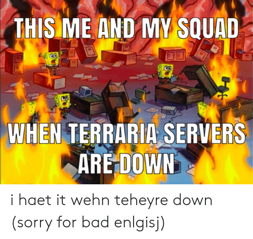 THIS ME AND MY SQUAD WHEN TERRARIA SERVERS ARE DOWN I Haet It Wehn