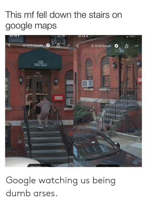 Dumb, Google, and Memes: This mf fell down the stairs on  google maps  01:14  O 2019  © 2019 Google  ,  725  725 Google watching us being dumb arses.