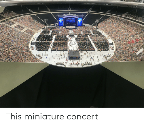 This,  Concert, and  Miniature: This miniature concert