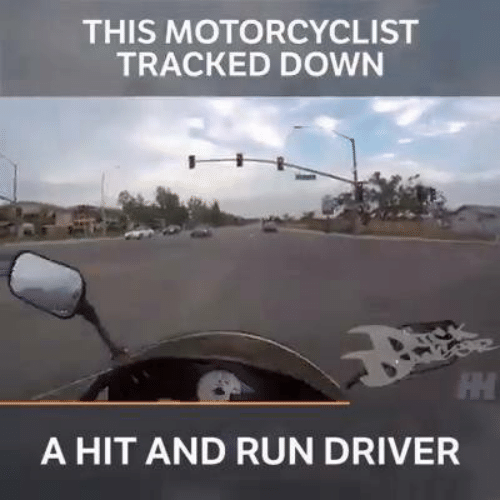 Memes, Run, and 🤖: THIS MOTORCYCLIST  TRACKED DOWN  A HIT AND RUN DRIVER