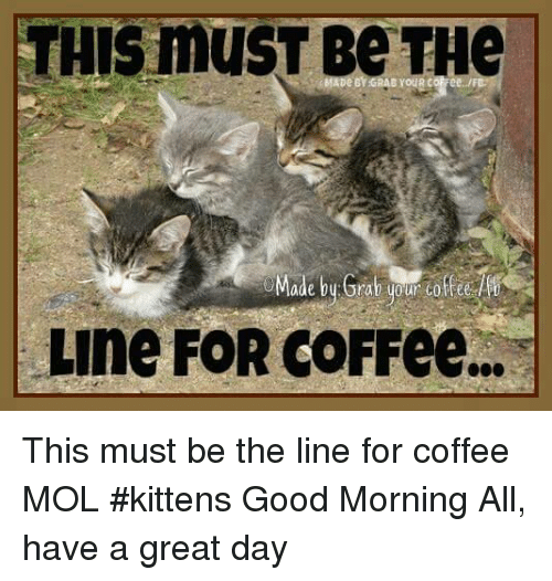 THIS Must Be THe Line FOR COFFee This Must Be the Line for Coffee ...