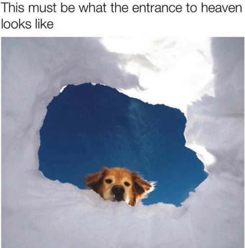 Heaven, What, and This: This must be what the entrance to heaven  looks like